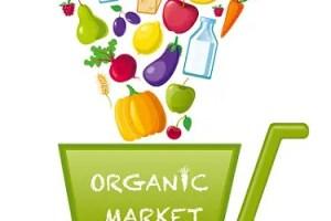 Tiendas online de alimentacion ecologica - Tiendas online de alimentos ecológicos. Los viernes de Ecología Cotidiana