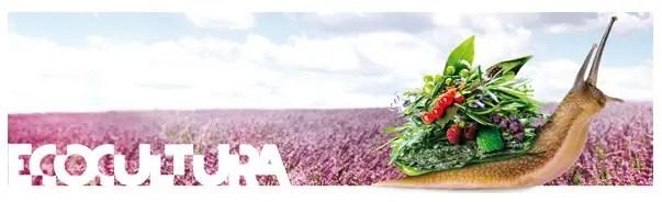 ecocultura - Ecosentido, Ecoaltea, Ecocultura, Ecoviure, Biocultura y Fira Slow Food: OTOÑO muy ecológico y alternativo