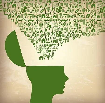 Consume con cabeza 5 consejos - ecological
