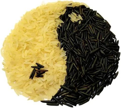 arroz - Lo ECOLÓGICO es ECOnómico y es LÓGICO
