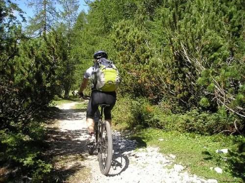 bicicleta montaña - bicicleta montaña
