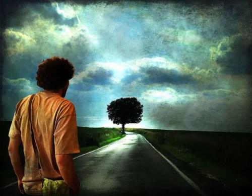 los caminos de la vida -