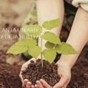 planta un árbol - Bosque Chiruca. Plantemos 6.000 árboles