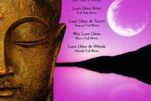 wesakblog - Mini Luna Llena Rosa de Wesak