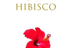 20170402 La leyenda del hibisco v1 portada digital - La leyenda del hibisco: donde literatura y espiritualidad se encuentran