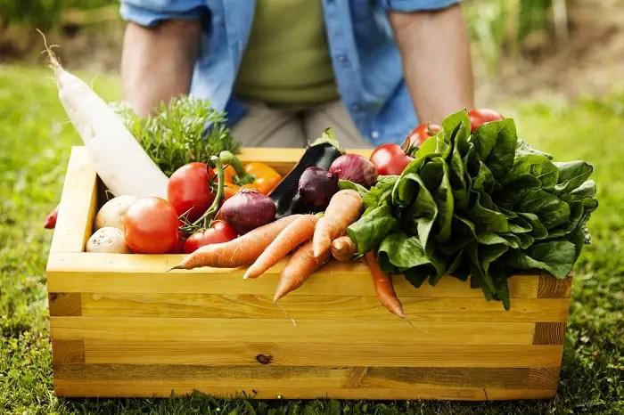 alimentos ecológicos - Los 6 beneficios de los productos y alimentos ecológicos