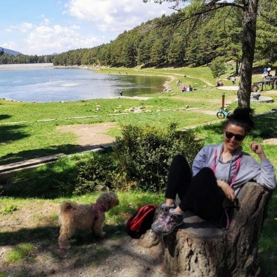 viajar con perro a Andorra