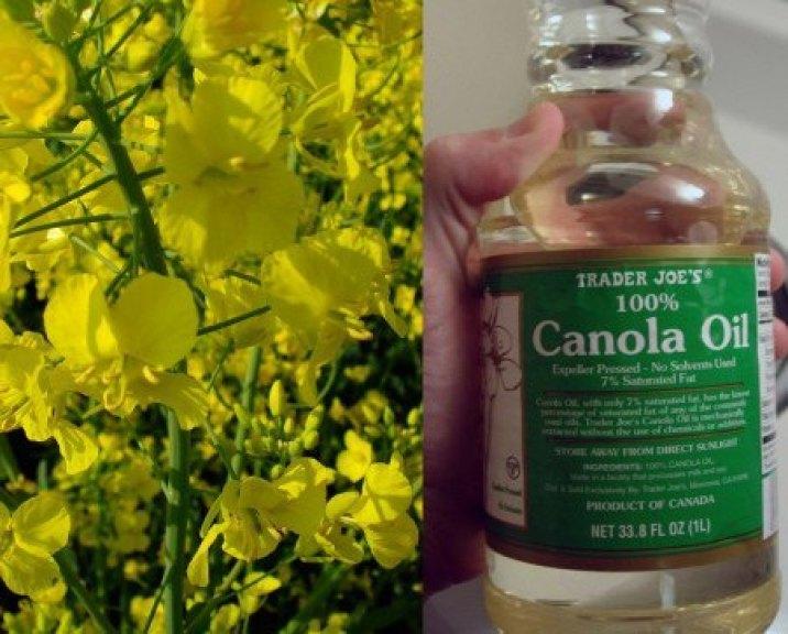 Aceite de Canola como lubricante vaginal