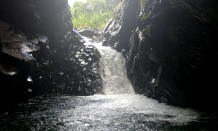 Ven a Conocer el Cañón del Río Macho de Monte