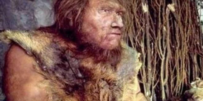 """ثقافة .. اكتشاف أثر آخر سلف للإنسان """"نياندرتال"""" في جبل طارق"""