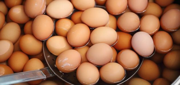 طبخ .. كيفية سلق البيض .. الشبكة نت