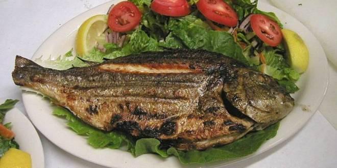 صحة الاسرة .. تناول الأسماك مرة أسبوعياً يقي الصغار من الإكزيما والربو