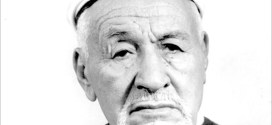 الشيخ البشير الابراهيمي الرمز الحي لكفاح الجزائر