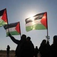 الدور الضعيف للسلطة الفلسطينية