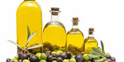 فوائد زيت الزيتون العديدة والمتعددة على الجسمعامة