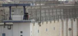 إدارة سجون الاحتلال تفرض إجراءات عقابية بحق الأسرى الفلسطينيين