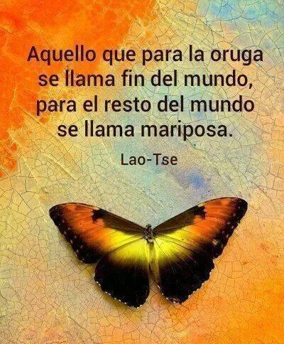 Mariposa - Luna Llena en Escorpio - Astrologia - El Cielo, la Tierra y Yo - Punta del Este, Uruguay