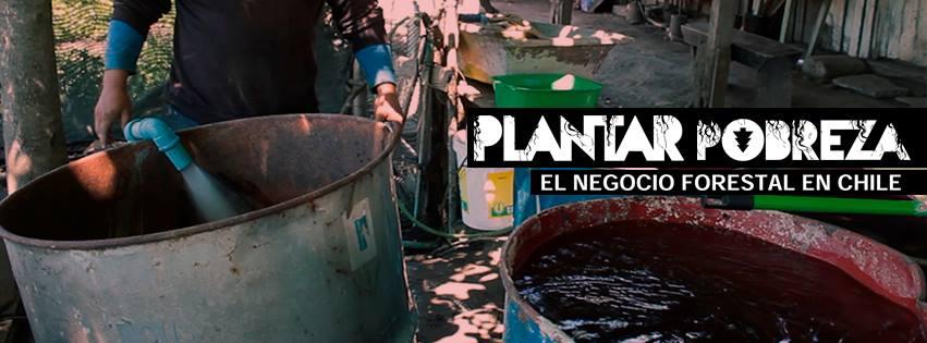 Documental: «Plantar pobreza, el negocio forestal en Chile»