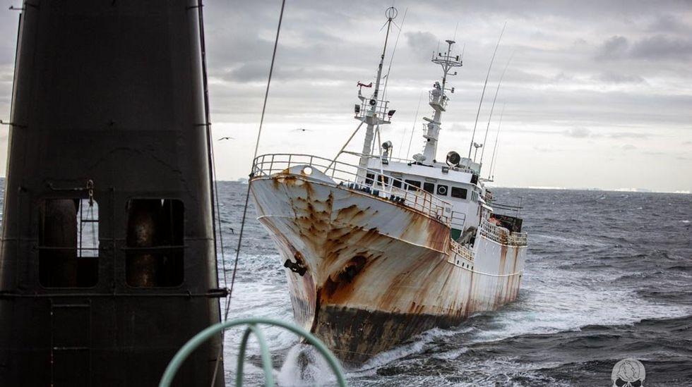"""Interceptan a navíos """"españoles"""" que pescaban ilegalmente merluza en la Antártica"""