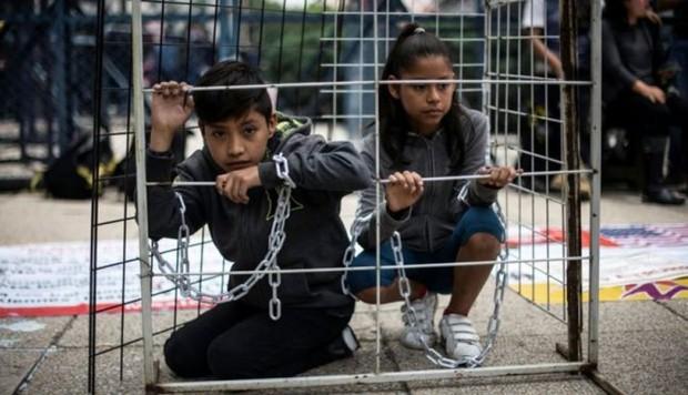 Jaulas migrantes