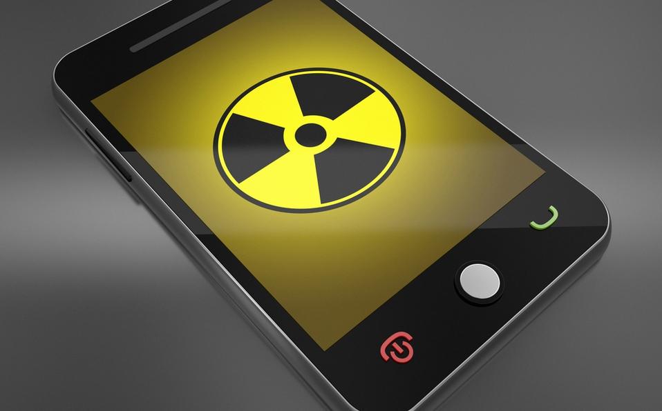 celulares radiación insectos