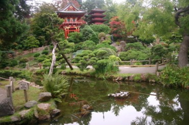 Image Result For Japanese Tea Garden San Francisco