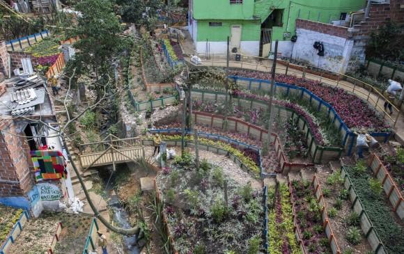 En los bajos del puente de Los Balsos en Villa del Socorro, comuna de Santa Cruz, un basurero que había en el sitio se transformó en este jardín que es cuidado por la comunidad. FOTO Róbinson Sáenz