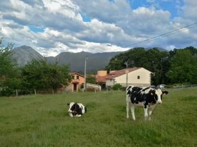 exterior-casa-rural-correntiu