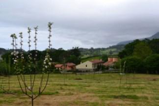 Alojamientos rurales El Correntíu