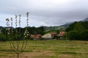 Alojamientos Rurales el Correntíu desde la finca agrícola