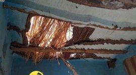 شركة مكافحة النمل الابيض برابغ