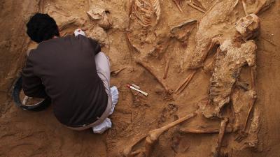 Trabajo arqueológico en la fosa de Puerto Real (Cádiz). / JUAN MIGUEL BAQUERO