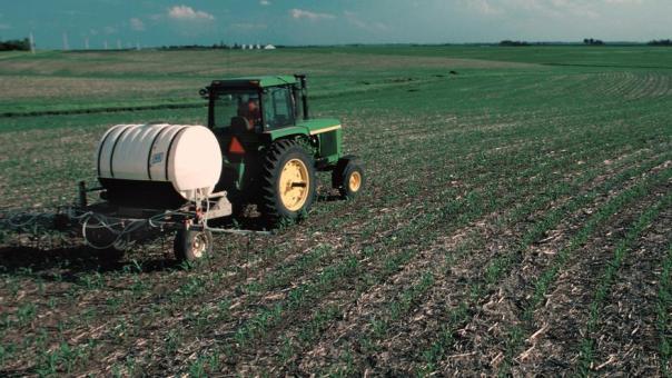 Labores de fertilización.