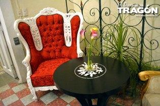 diario-tragon-rose-ville-02