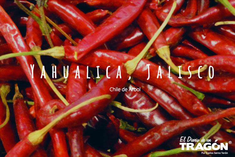 Resultado de imagen para chile Yahualica imagen