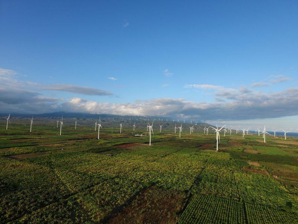 parques eólicos de ege haina