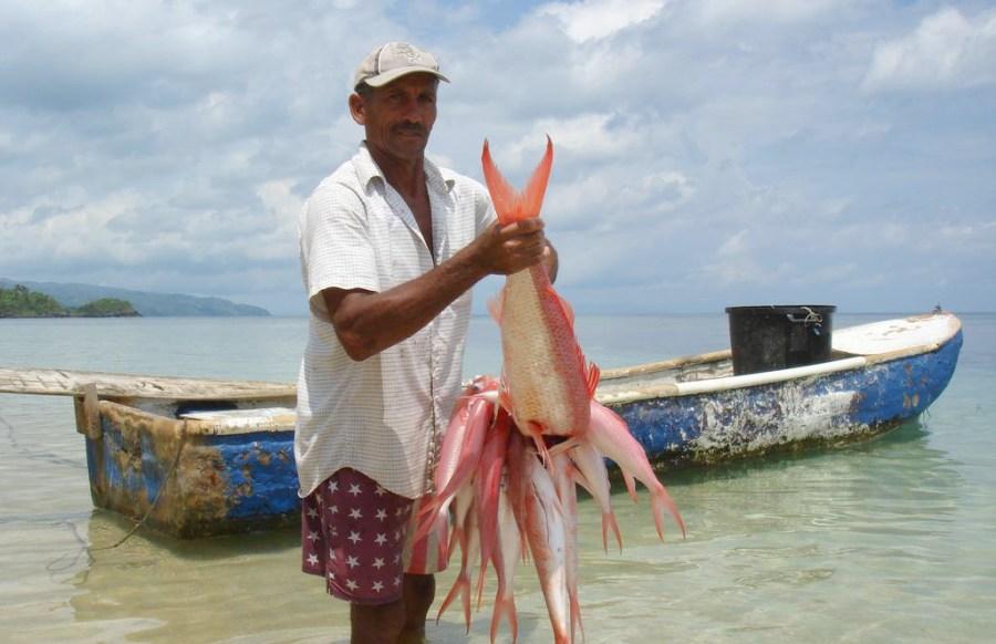 pesca en republica dominicana
