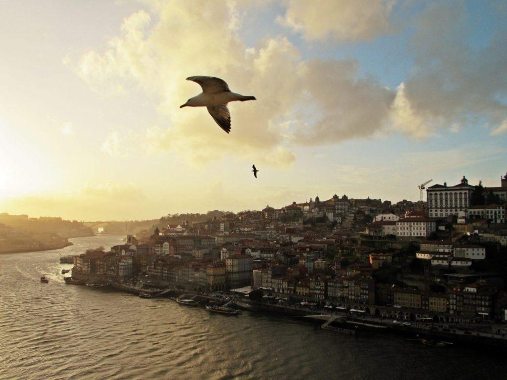 Miradores de Oporto. Mirador de Serra do Pilar