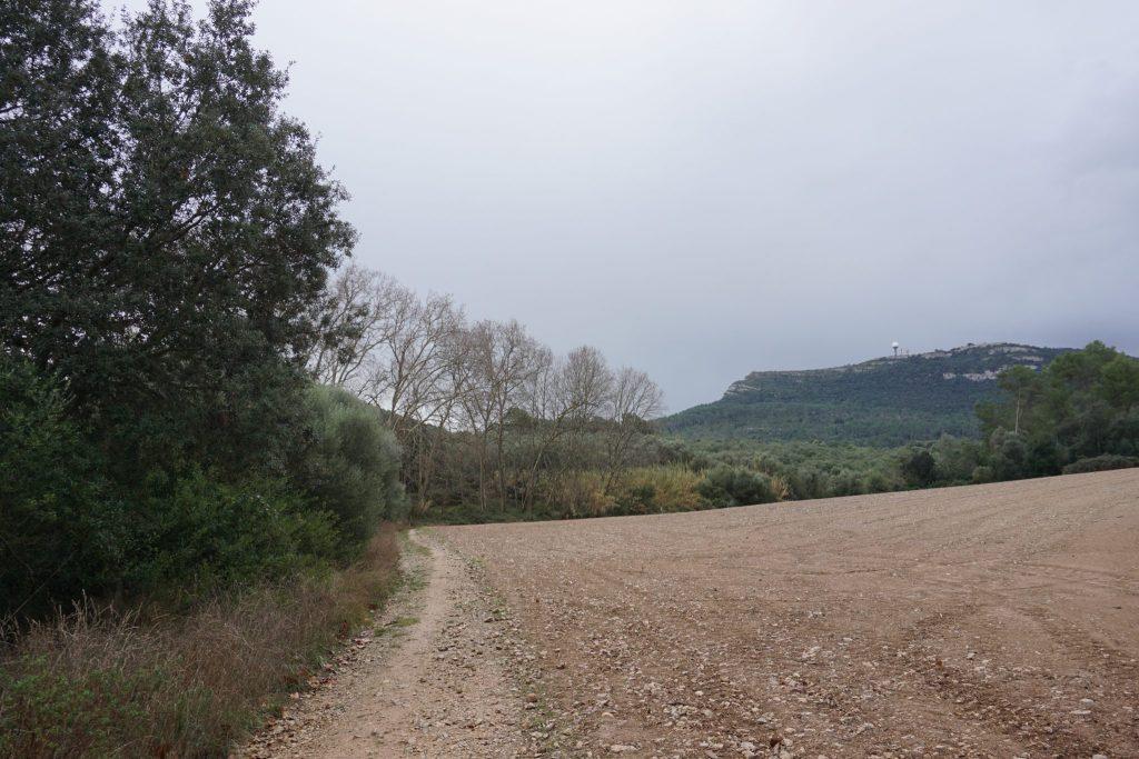 Llegando al torrente con el Puig de Randa al fondo.