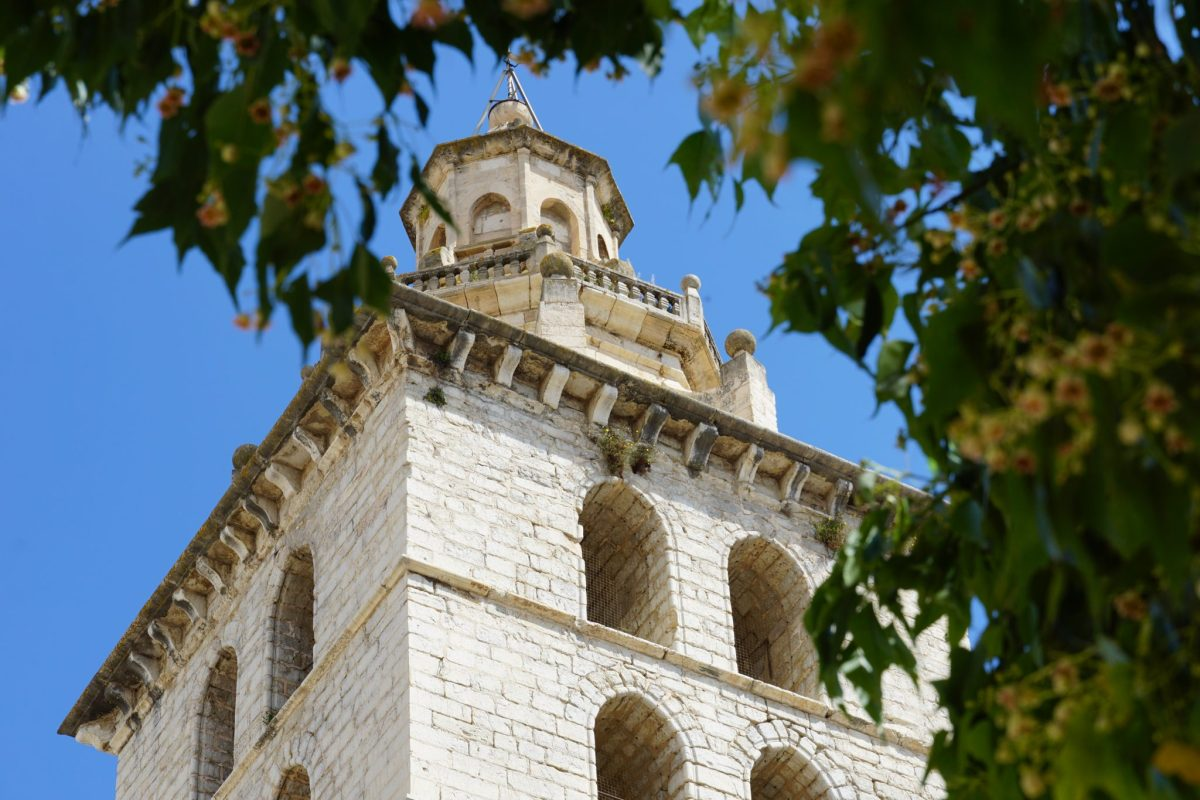 VII edicion Som de Mallorca
