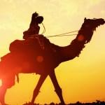 أفضل وِجهات رحلات الشتاء في مصر