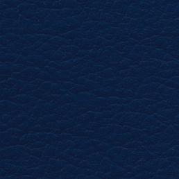 Eleather Swatch - Dark Blue