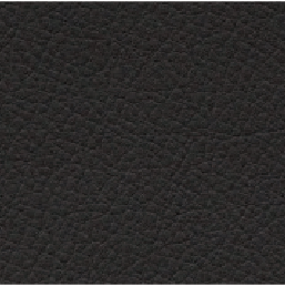 ELeather Swatch - Charcoal