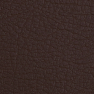 Eleather Swatch - Conkers