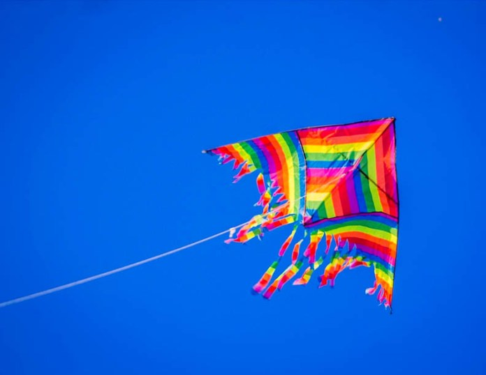 Tata Power Delhi Distribution Limited Safety Fly Kites