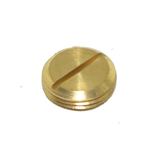 Brass Slotted Threaded Plug for use with 20mm Conduit