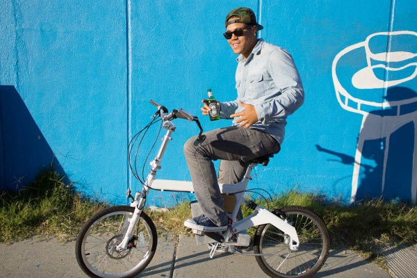 dui electric bike