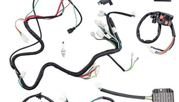 minireen complete wiring harness kit electrics wire loom assembly for gy6  4-stroke four wheelers