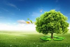 Divers types d energies renouvelables