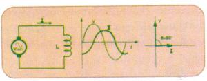 fases bobina